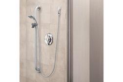 Moen showering system