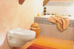 Saniflo toilet system