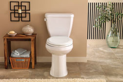 Gerber enhanced toilet