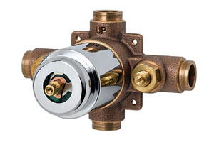 T&S Brass shower valve